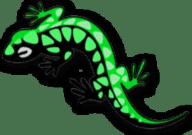 Логотип компании &quotes;Salamander&quotes;